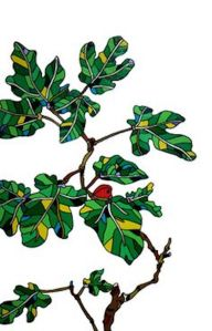 drawn-branch-fig-tree-20