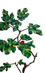 drawn-branch-fig-tree-20